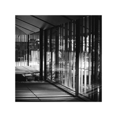 untitled (michaeladkins.co.uk) Tags: ilford ilfordfp4 fp4 blackandwhite film bw mediumformat monochrome gardens japan portland america usa japanesegardens architecture building structure buildings window windows reflection reflections art surface square 1x1 120 120rollfilm rollfilm fuji fujifilm fujigf670 fujifilmgf670 fujifilmgf670professional fujifilmgf670professional6x76x6dualformatfoldingcamera dualformat foldingcamera foldingcameras gf670 shootfilm shade filmisnotdead filmgrain filmphotography filmphotographer analogue analog analoguephotography northamerica americansurfaces fixedlens 6x6 shadow shad shades tone topographics newtopographics travel travelphotography