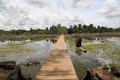 Angkor_Neak_Pean_2014_24