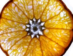 Clementine (KaAuenwasser) Tags: clementine zitrus frucht scheibe makro kammern fruchtfleisch zellen licht stern form muster schale kreis rund
