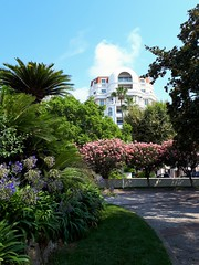 Jardin a Cannes, France (angelinas) Tags: cannes france jardins garden trees flowers fleurs cotedazur frenchriviera europe summer travelovers travelphotography outdoor europeanvacation lacroissette landscapes paysages paesaggi francia