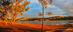 Lake Eildon, Victoria (Peter.Stokes) Tags: australia australian colour landscape nature outdoors photo photography lakeeildon lake sun sunshine trees
