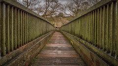 Leading the way... (Lee Harris Photography) Tags: bridge wooden structure outdoor leadingline trees building pov contrast grassington yorkshire uk