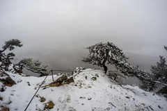 0047_GOPR4799 (marcellszmandray) Tags: ausztria hohewand gutensteinialpok alpok viaferrata kirándulás tavasz hó gebirgsvereinsteig