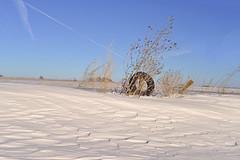 Snow in Kansas (slammerking) Tags: snow drift tire kansas