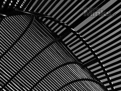 ESCUELA DE FOTOGRAFÍA (Thanks for + 700.000 Views) Tags: américa art arte beauty black white blanc blanco blancoynegro bn bnw bw chile chili cielo clases composicion contraluz contrast contraste curso cursos elisardo elisardominks escuela fotografia escueladefotografía estudiodefotografia fine fineartphotography fotografía viña del mar viñadelmar taller lineas lines
