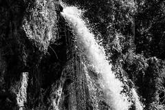 Waterfall - Rifle Falls, Colorado (BeerAndLoathing) Tags: 2018 usa blackwhite roadtrip riflefalls bw 77d pallisadetrip august trip waterfall canon summer canoneos77d colorado blackandwhite