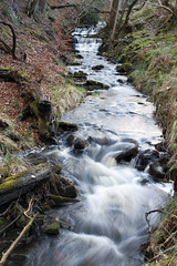 Pendle Hill Brook
