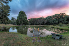 The Dam DSC_3467 (BlueberryAsh) Tags: dam farm farmdam sunset sky cloudsstormssunsetssunrises clouds water reflection jetty paddock nikond750 nikon24120
