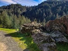 Pine Tree Ridge (Steven P. Moreno) Tags: california usa sonomacounty stevenpmoreno nature rock stevenmorenospix2019 sky trees scenic northerncalifornia