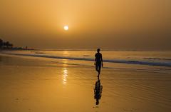 Out of Africa (Pawel Wietecha) Tags: africa gambia beach sea ocean water gold orange sun sunset landscape seascape silhouette sky travel trip journey color light