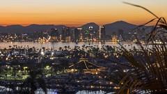 San Diego (selo0901) Tags: san diego sunrise skyline lucinda street terrace amada