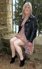 Barred (janegeetgirl2) Tags: transvestite crossdresser crossdressing tgirl tv ts trans jane gee black ankle boots biker jacket battle hastings 1066 leopard dress animal