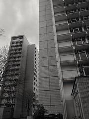 #architecture #blackandwhite #city #urban #highrise #sky #trees #plattenbau #tiles #dresden #europe #send (claudio-g-c) Tags: sky highrise tiles plattenbau blackandwhite urban city trees dresden europe send architecture