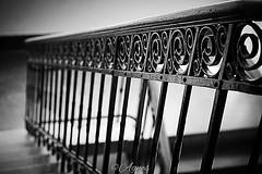 Let's go down... #2019#visitgroningen#instameetgroningen#fotosipkes#stairs#hetpaleis#building#old#design#instadesign#hotel#palace#cityphotography#groningen#letsgodown#bnw#bnwphotography#bw#bwphotography#blackandwhite#photography#love#photooftheday#mooigru (agnes.postma.hoogeveen) Tags: love photooftheday loveit fotosipkes stairs bwphotography building instadesign groningen blackandwhite bw design hotel cityphotography mooigrunnen instameetgroningen palace old bnw 2019 hetpaleis bnwphotography visitgroningen letsgodown photography