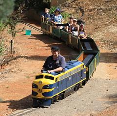 2018-11-04_1006-19-560 B84 at Willans Hill Miniature Railway Wagga Wagga Invitation Run (gunzel412) Tags: aus australia geo:lat=3512932000 geo:lon=14736784000 geotagged newsouthwales turveypark waggawagga