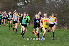 DSC_0122 (running.images) Tags: xc running essex schools crosscountry championships champs cross country sport getty