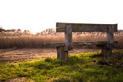 Bench (Stickymedia.jeffrey) Tags: sunset nature outside bench winter
