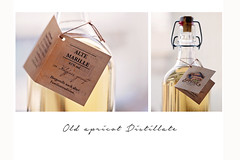 old apricot distillate (Sabinche) Tags: alcohol bottle apricot distillate sabinche