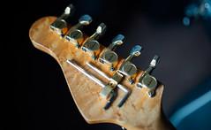 _DSC3520 (shixart1985) Tags: charvel electric guitar hawaiian koa natural wood mahagony nikon d610 dimarzio pickups floyd rose tremolo rock music shred jacskon tuners gold instrument