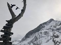 En haut (Jauss) Tags: baptiste gaspard allemagne germany bayern bavière alps alpi alpes garmischpartenkirchen