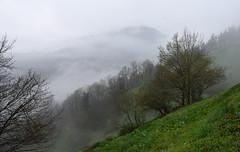 Lainoak (Paulo Etxeberria) Tags: lainoak nieblas mist brouillard murumendi ordizia paisaia paisaje landscape paysage