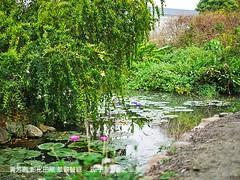 菁芳園 彰化田尾 景觀餐廳 10 (slan0218) Tags: 菁芳園 彰化田尾 景觀餐廳 10