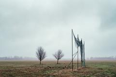 Dreamcatcher (Ralph Graef) Tags: tree brandenburg havelland net rural acre dystopia desolation melancholy winter drabness drab dreary