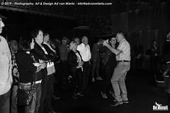 2019 Bosuil-Het publiek bij Steady State en The Animals 15-ZW