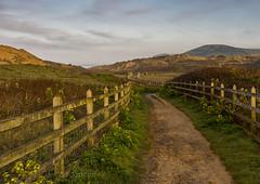 Down the yellow dirt road. (Through Bri`s Lens) Tags: northdevon croyde path track fence sunrise mist devon light sunlight brianspicer canon5dmk3 canon1635f4