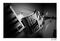 Darkroom (Aljaž Anžič Tuna) Tags: dark room darkroom pictures photos analog paper photo365 project365 onephotoaday onceaday 365 35mm 365challenge 365project nikkor nice nikon nikkor28mm 28mm 28mmf28 nikond700 dailyphoto day d700 bw blackandwhite black white blackwhite beautiful b