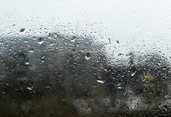 Dagens tema är nyårslöfte. Löftet är att vädret inte ska hindra mig från att gå och motionera eller fotografera. (larseriksfoto) Tags: nyarslofte fotosondag fs190113 regn rain weather väder fotografera motionera exercise walk photograph