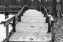Dock (BRB1952) Tags: winter mayburystatepark northville michigan