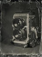 img294 (Adam Clark Photography) Tags: wetplate collodion 4x5 largeformat intrepid 180mm fujinon mamiya kodak brownie camera stilllife tlr