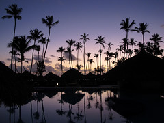 Pre-dawn Silhouettes (zoniedude1) Tags: dominicanrepublic sunrise beauty predawnsilhouettes warm tropical morning caribbean resort tropicalscenery daybreak swimmingpool palmtrees bávarobeach sky clouds caribbeansunrise scenic scenery poolside paradisuspalmareal romantic exotic bávaro puntacana thedr laaltagraciaprovince hispaniola greaterantilles plma2019 exotictravel fun relaxation canonpowershotg12 pspx19 zoniedude1