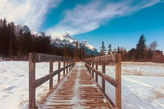 Nature Boardwalk ... (Mr. Happy Face - Peace :)) Tags: albertabound cans2s canmore hiking flickrfriday art2019 sky cloud sun winter season snowcaps mountains forest