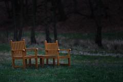 PGHS1502 (klangcharakter) Tags: panasonic gh5s lumix mft samyang 85mm f14 iso800 1200sek wildsachsen hofheim taunus hessen stuhl stühle wald wiese natur nature wood baum bäume pause entspannung luminar3