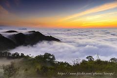 暮色 (Benz Yu) Tags: 山岳 茶園 樹林 風景 色溫 雲瀑 黃昏 雲海 梅山太平 夕陽