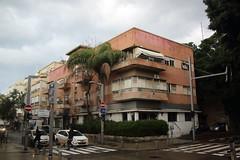 036A9389 (zet11) Tags: izrael telaviv ulica drzewa architektura