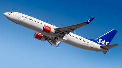 Boeing 737-86N(WL) LN-RGF SAS Scandinavian Airlines (William Musculus) Tags: airport spotting aviation plane airplane fra frankfurt am main rhein fraport frankfurtmain eddf flughafen lnrgf sas scandinavian airlines boeing 73786nwl 737800 sk william musculus