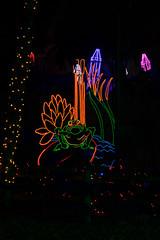 ribbit (johngpt) Tags: lights trees fujinonxf55200mmf3548rlmois tree fujifilmxt1 riveroflights frogs crayons places abqbotanicgardens