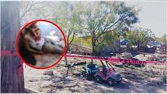 Estremece brutal muerte de migrante a manos de su propio amigo en Coahuila (HUNI GAMING) Tags: estremece brutal muerte de migrante manos su propio amigo en coahuila