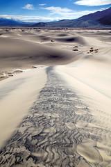Leading line (BDFri2012) Tags: mesquiteflatsanddunes sanddunes sand dune deathvalleynationalpark deathvalley desert desertsouthwest southwestunitedstates california ca americansouthwest landscape