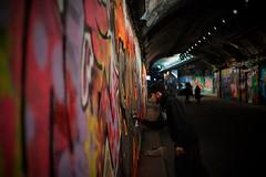 The graffiti artist (m5cjk) Tags: banksy leakestreet