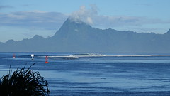 Polynésie 2019 - Tahiti (Valerie Hukalo) Tags: punaauia hukalo valériehukalo tahiti polynésiefrançaise polynesia océanpacifique pacificocean moorea archipeldelasociété archipel island île océanie polynésie françaisefrench polynesiaocéan pacifiquepacific oceanfrancearchipel de la société