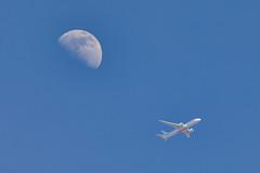 342A2464 (GabJPN) Tags: malpensa mxp limc airport aircraft sky airplane landing spotter