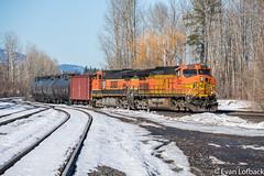 BNSF 5523 West at Boyer, ID (evanlofback) Tags: railroadbnsf kootenairiversub enginebnsf sunny winter snow bnsf5523 c449w h2 oil boyer sandpoint