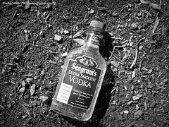 Vodka! Extra Smooth (Ivy1111) Tags: liqour jars litter city trash