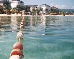 Jamaica (Crawford Brian) Tags: jamaica montegobay water sea ocean resort palmtree tomography tiger 110 instamatic iso200 analog