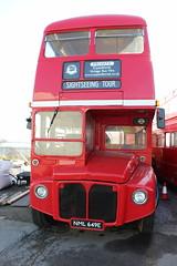 RML2649 (NML649E-Business B Ltd) 23-02-2019 Yard.1 (routemaster2217) Tags: businessbltd expeditional aecroutemaster parkroyal stepentrancebus doubledecker openplatform halfcab classicbus rml2649 nml649e exlondon londontransport