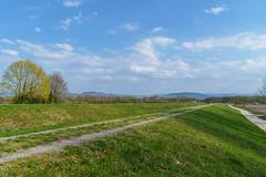 Frühling (KaAuenwasser) Tags: landschaft sandbach frühling wiese rasen wildwiese damm felder acker baum bäume obstbäume kulturen himmel wolken licht blüten weg wege iffezheim natur grün